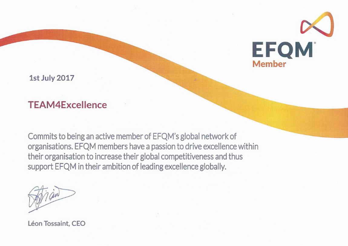 Reprezentant EFQM în România