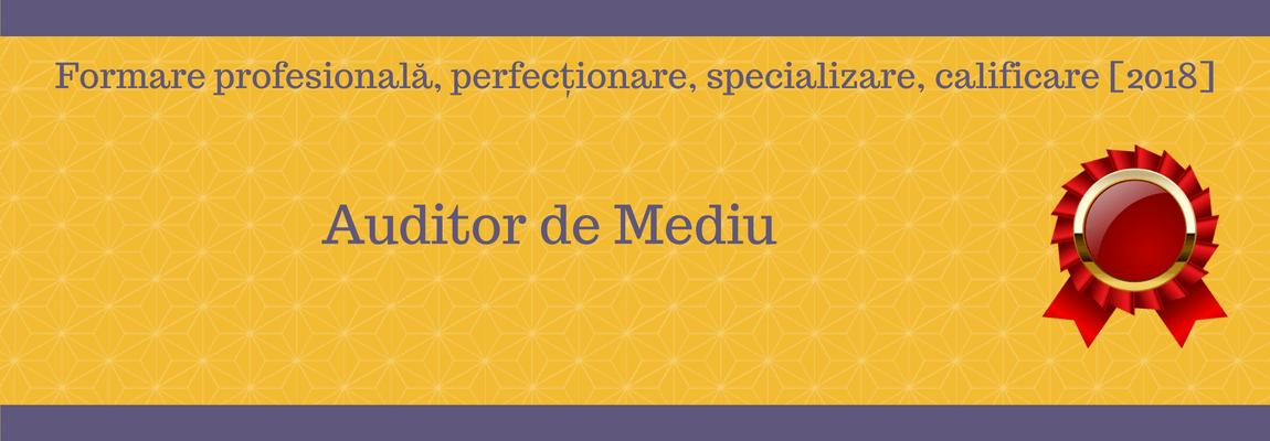 Auditor de Mediu