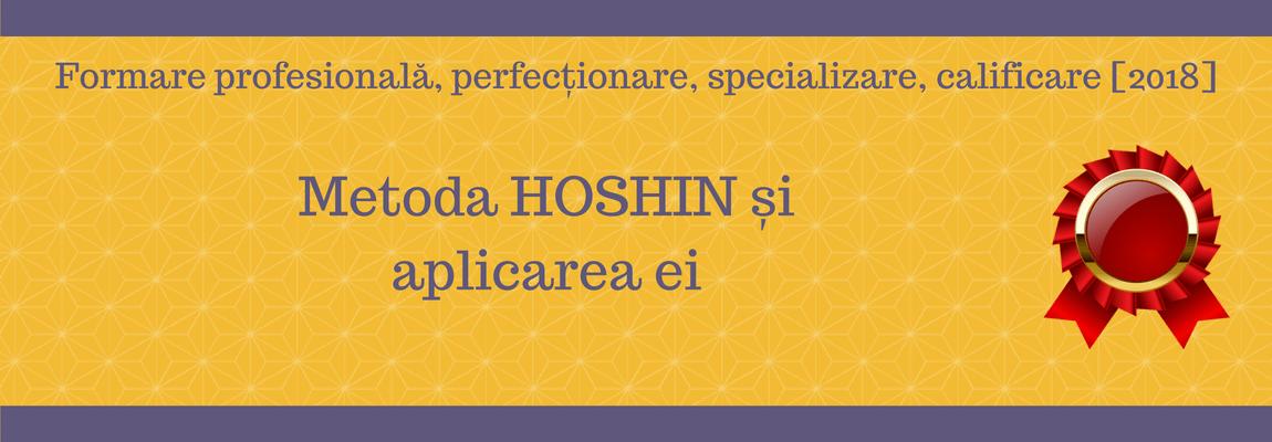 Metoda Hoshin și Aplicarea Ei