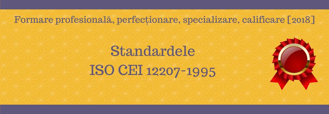 Standardele ISO CEI 12207-1995